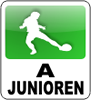 tl_files/TSV/Logos/Logo-a-junioren.png